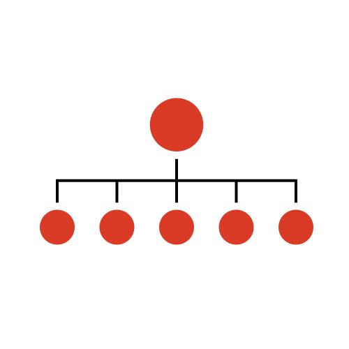 Figure 3: centralised team model
