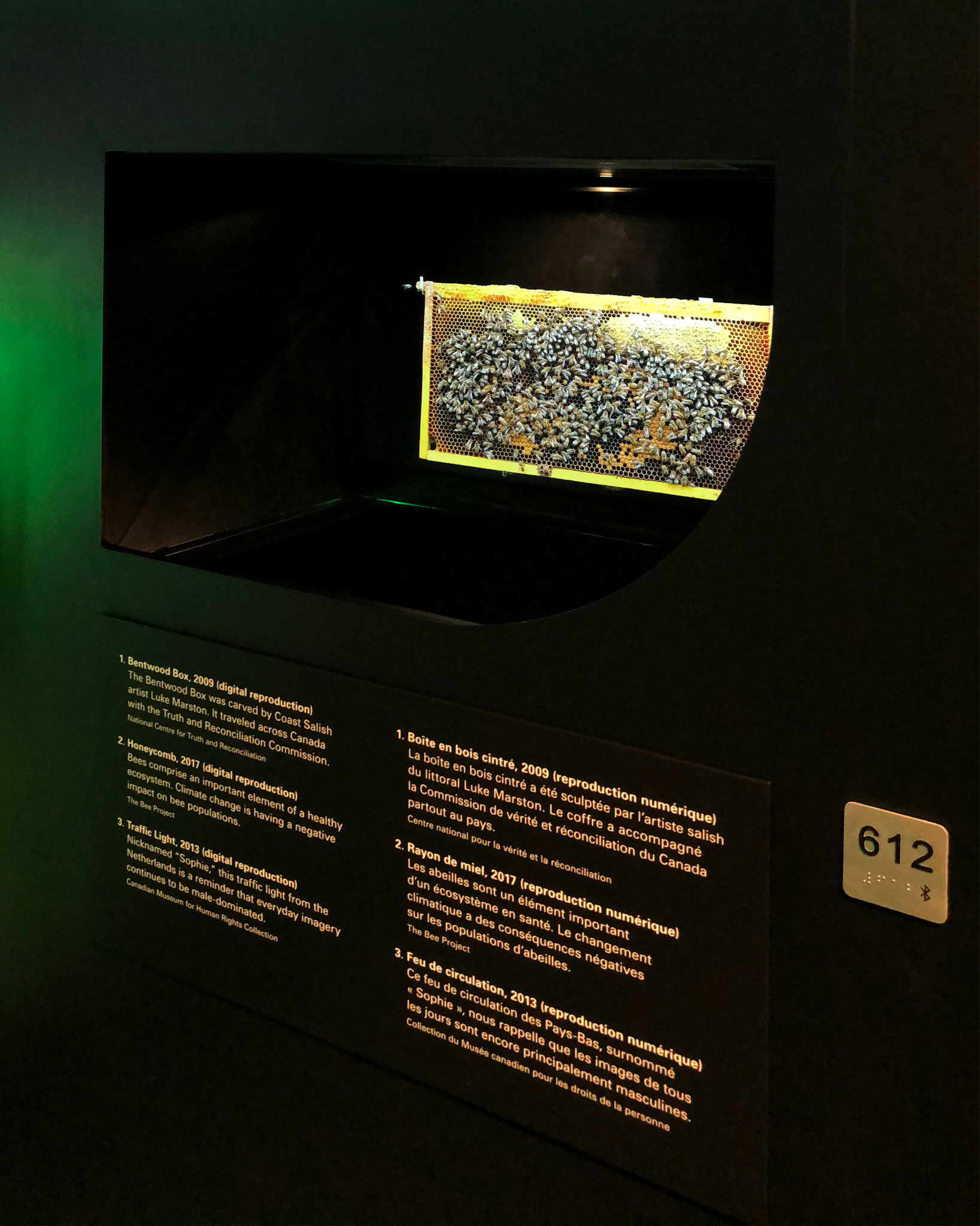 A bee colony is displayed on a holographic device surrounded by printed exhibition text.