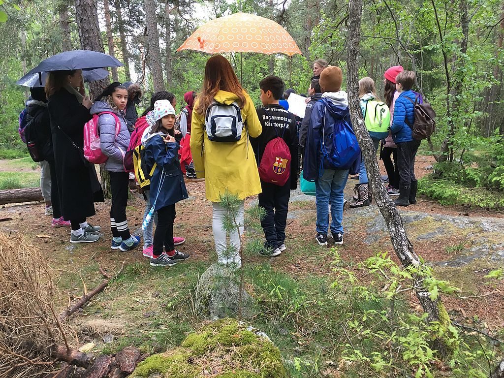 Students in a rainy forest.